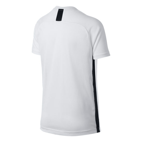 Nike Dry Academy Junior Top (White)